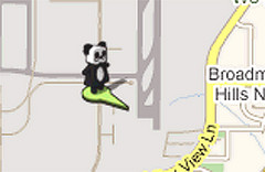 Street View Panda close up
